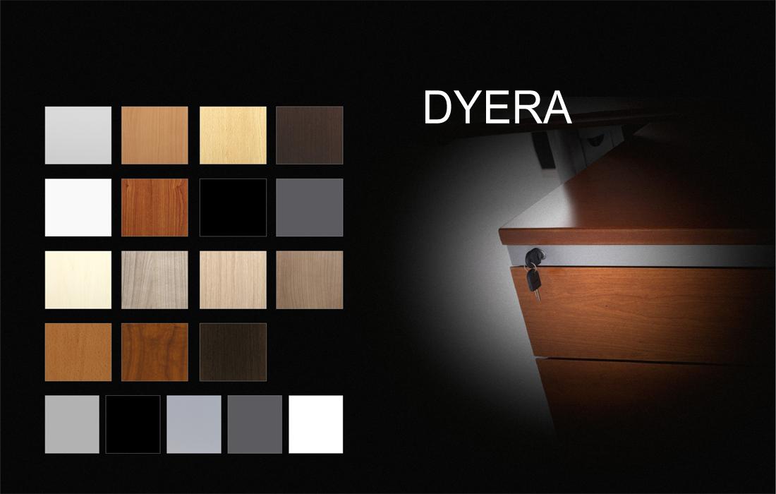 00_Dyera