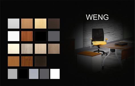 00_Weng