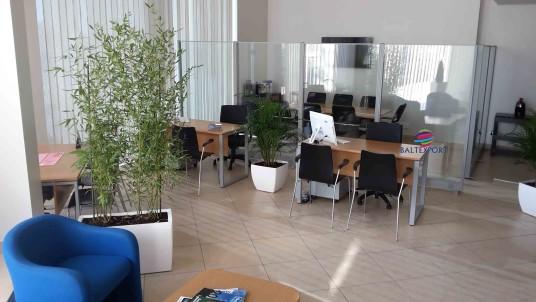 Baltexport mobiliário de escritório | Equipa Novas Instalações da Imobiliária Gesticasa